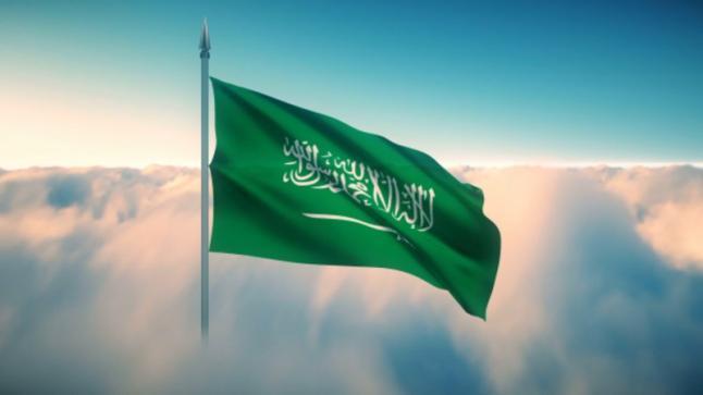حكومة المملكة تندد باختطاف قاطرة رابغ 3 البحرية في مضيف باب المندب على أيدي الحوثيين